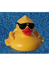 Cool-Duck